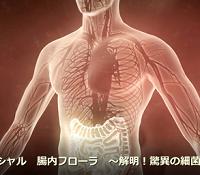 NHKスペシャル 腸内フローラ 再放送を確実に観る方法!